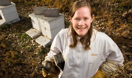An article I published recently on bees
