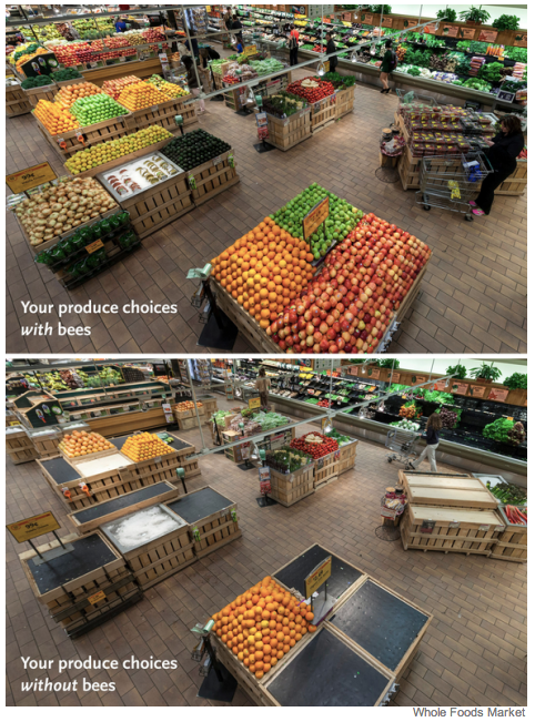 Our Supermarkets without Bees