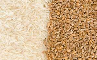 You Are What You Eat? The Psychology of Rice vs. Wheat